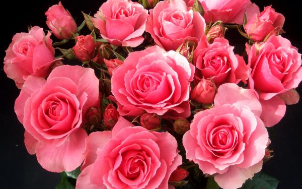 kartinki24_ru_flower_bouguets_112.jpg