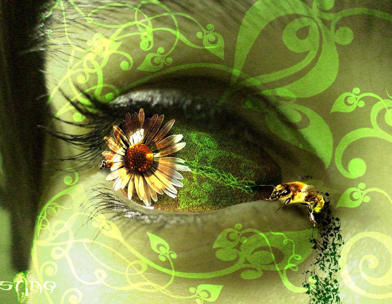 скачать бесплатно программу для глаз цветок - фото 10