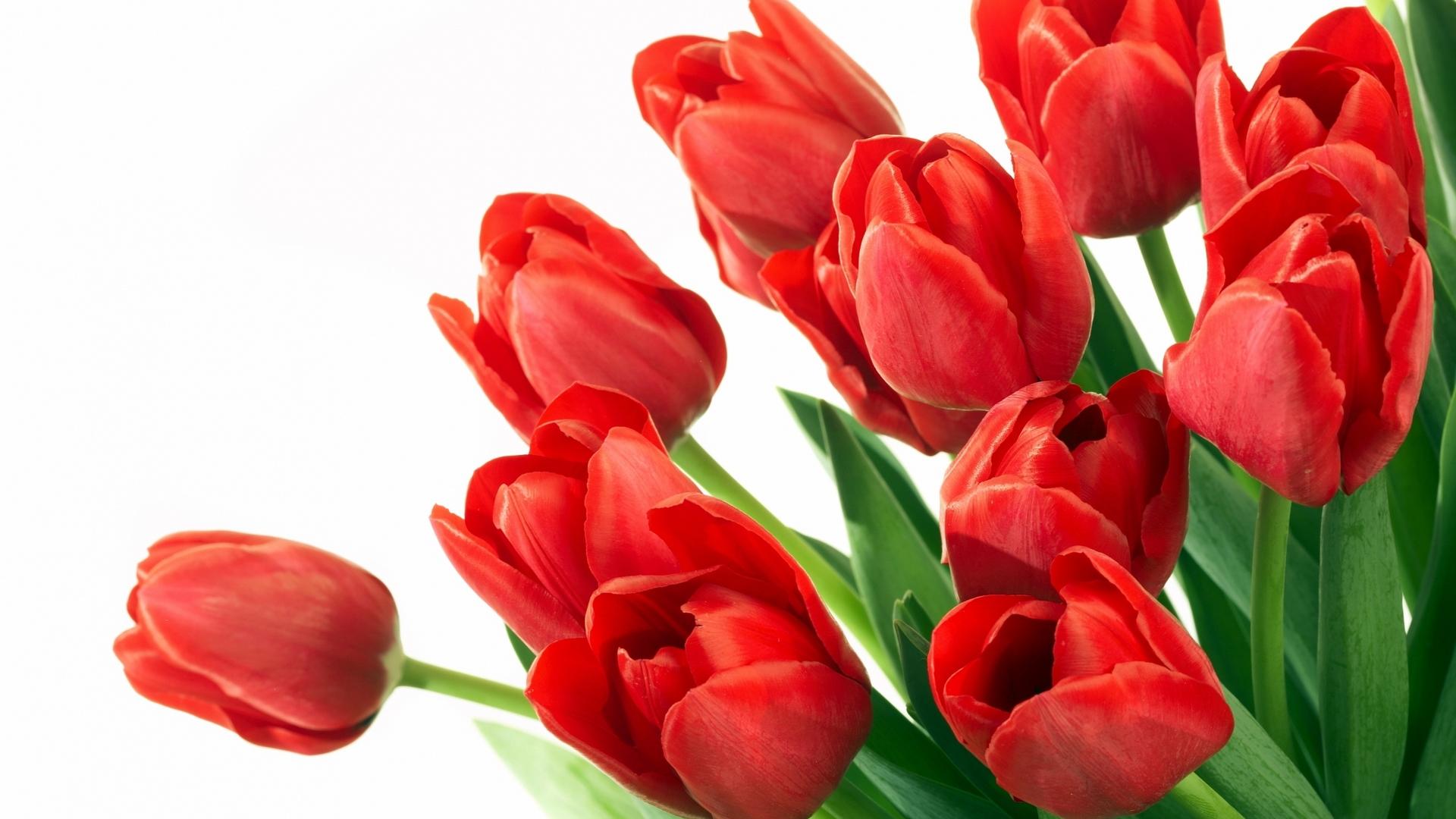 http://www.kartinki24.ru/uploads/gallery/main/207/k669k9sqhx.jpg