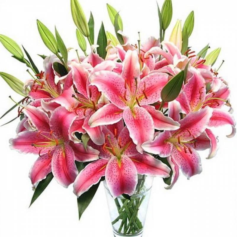 Букеты цветы лилии