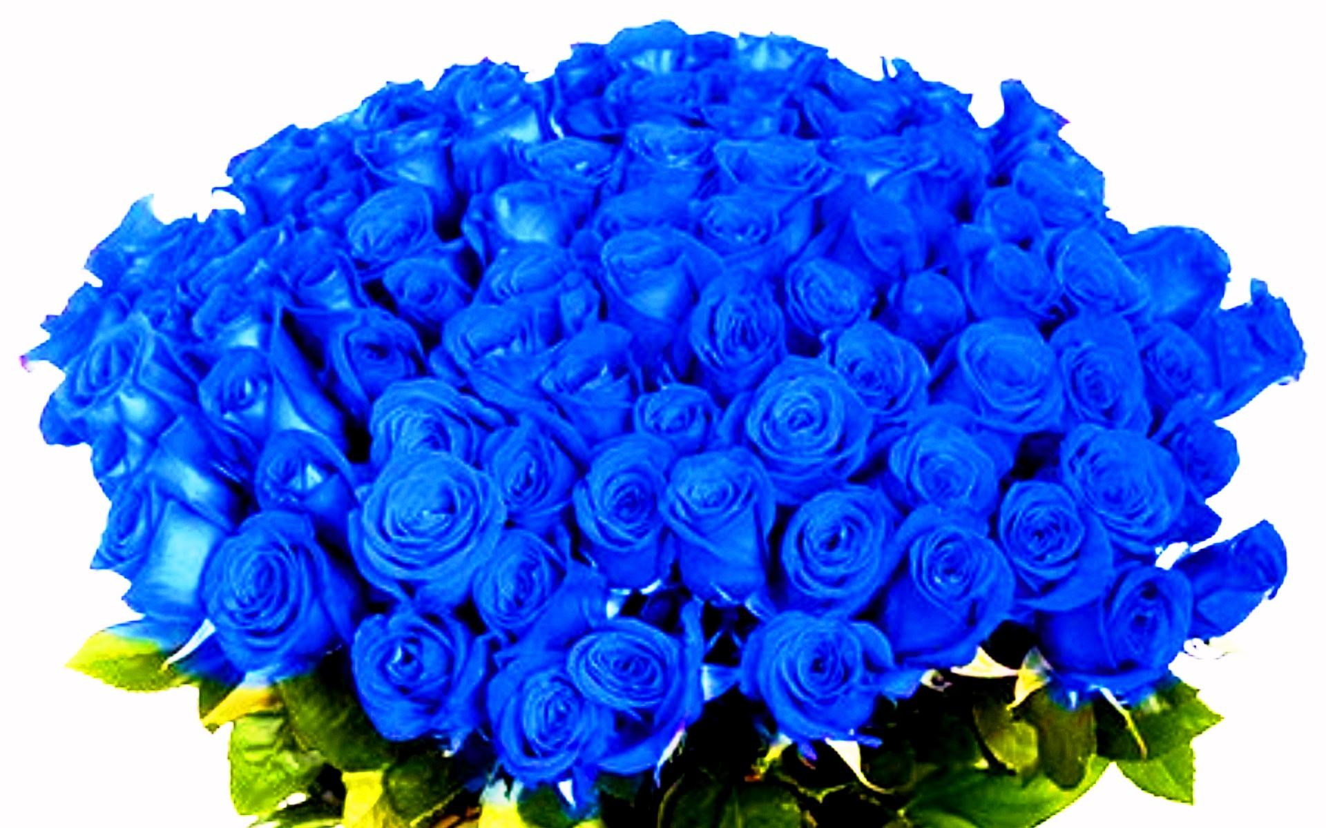 Скачать букеты цветов бесплатно