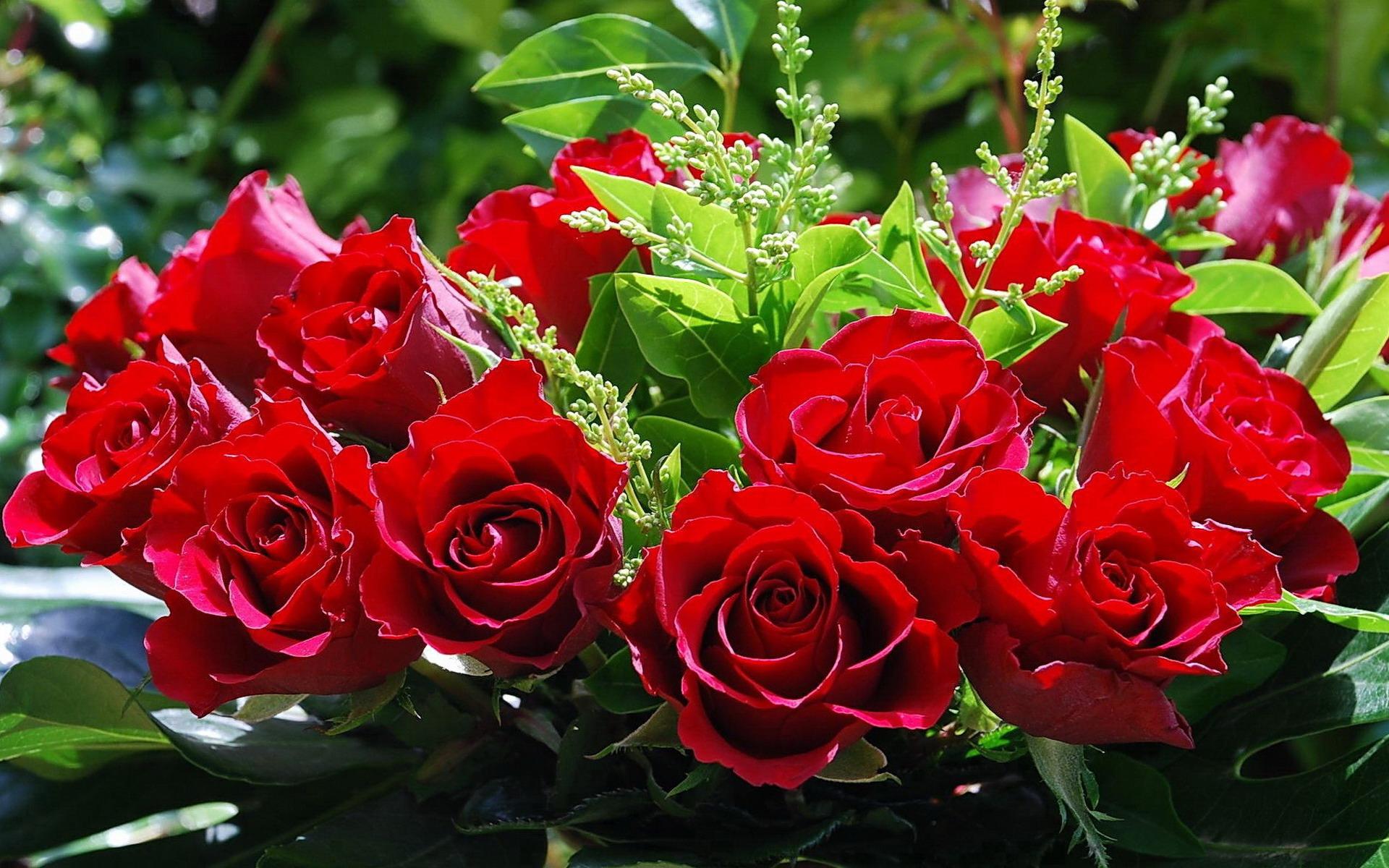Скачать букеты цветы картинки