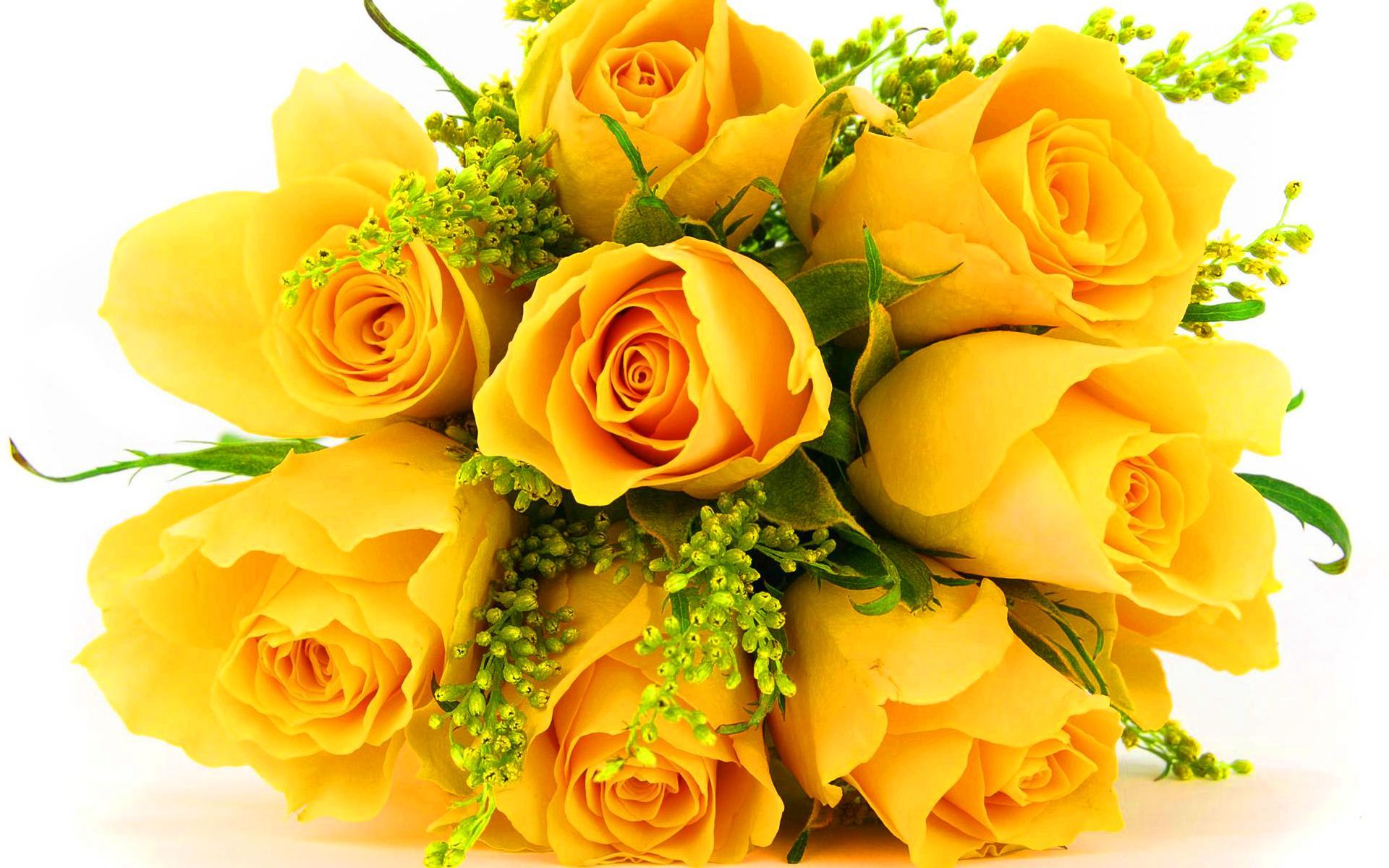 Розы фото букет красивые
