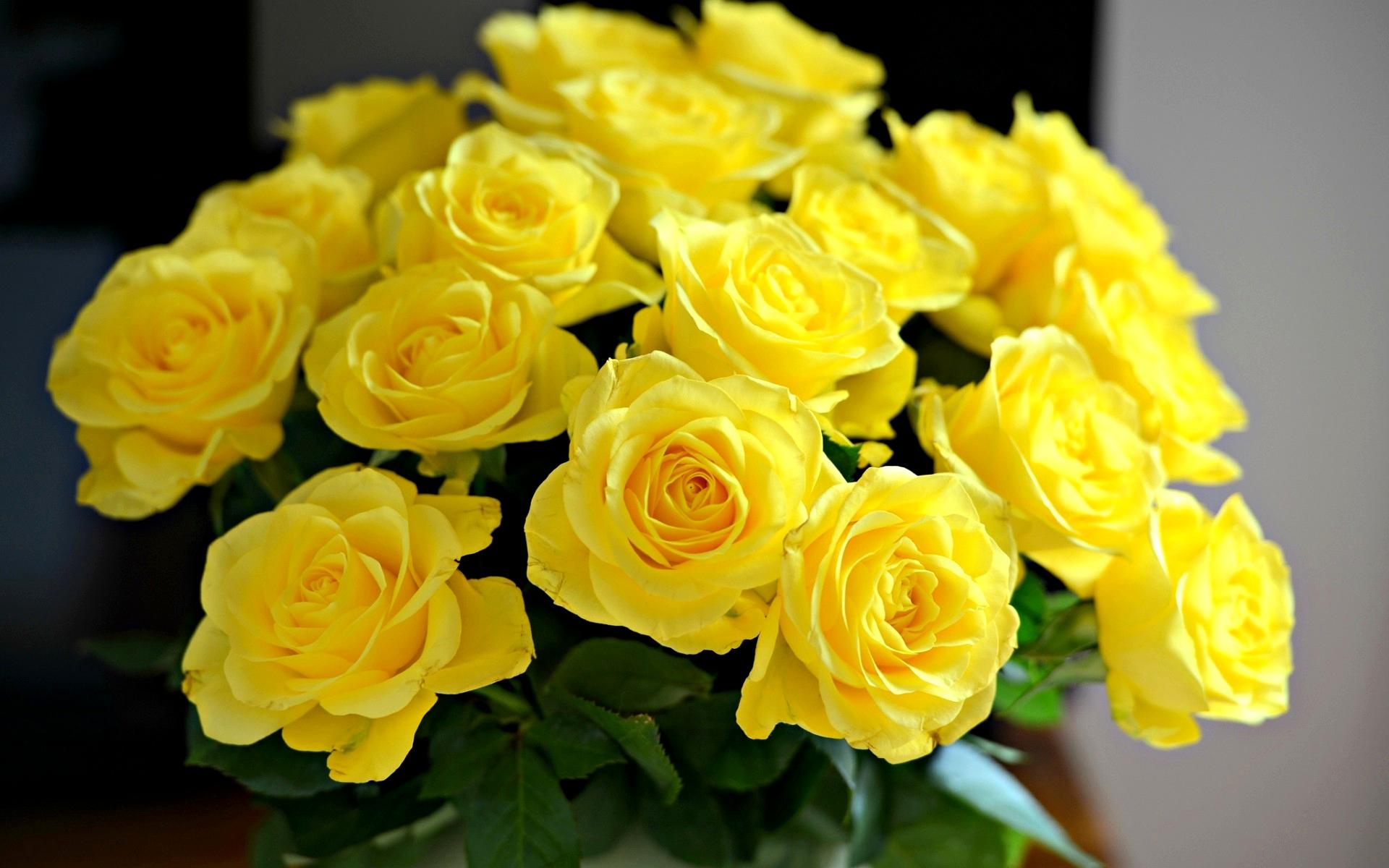 ЦветокТорг - Заказ и доставка цветов 12