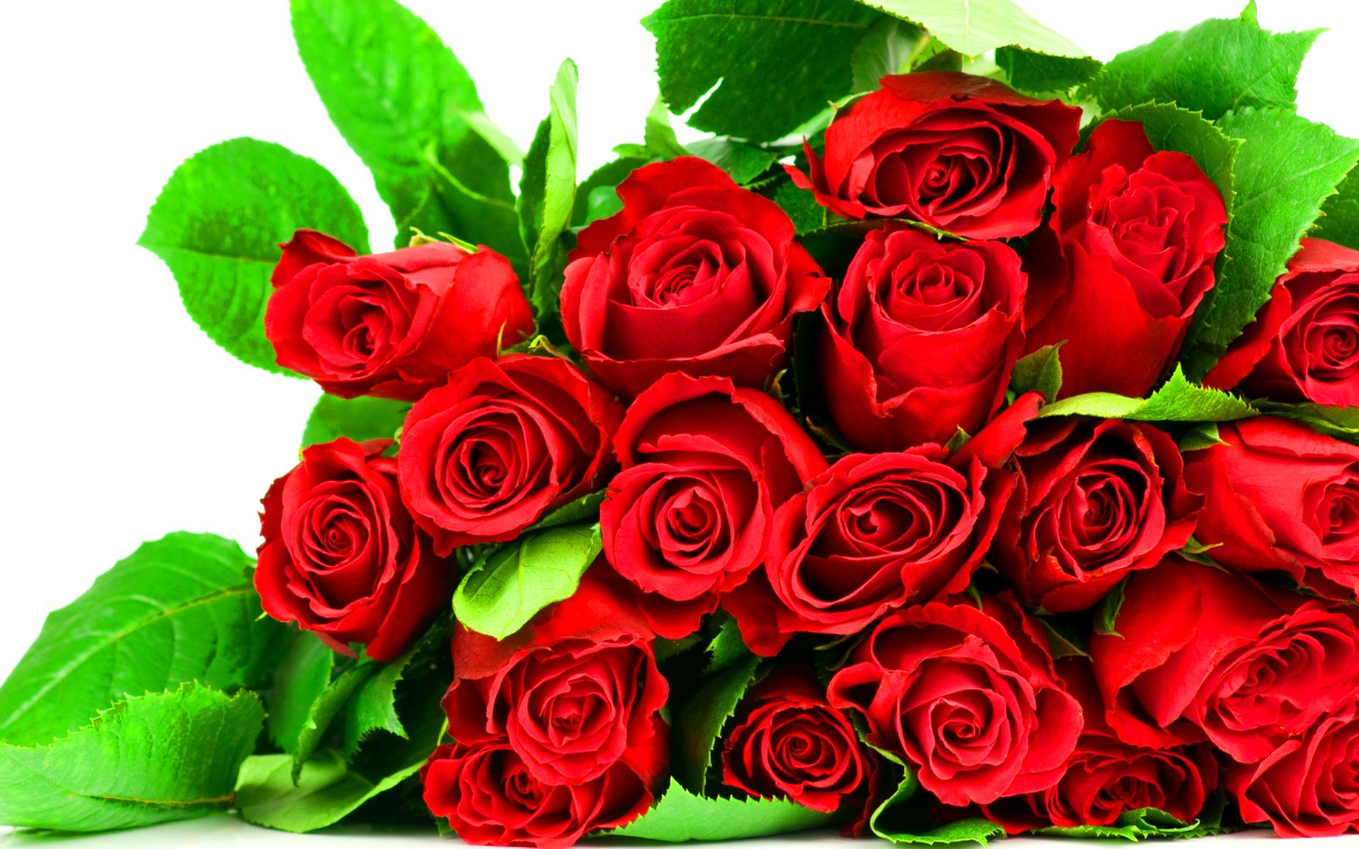 Фото цветы на 55 лет