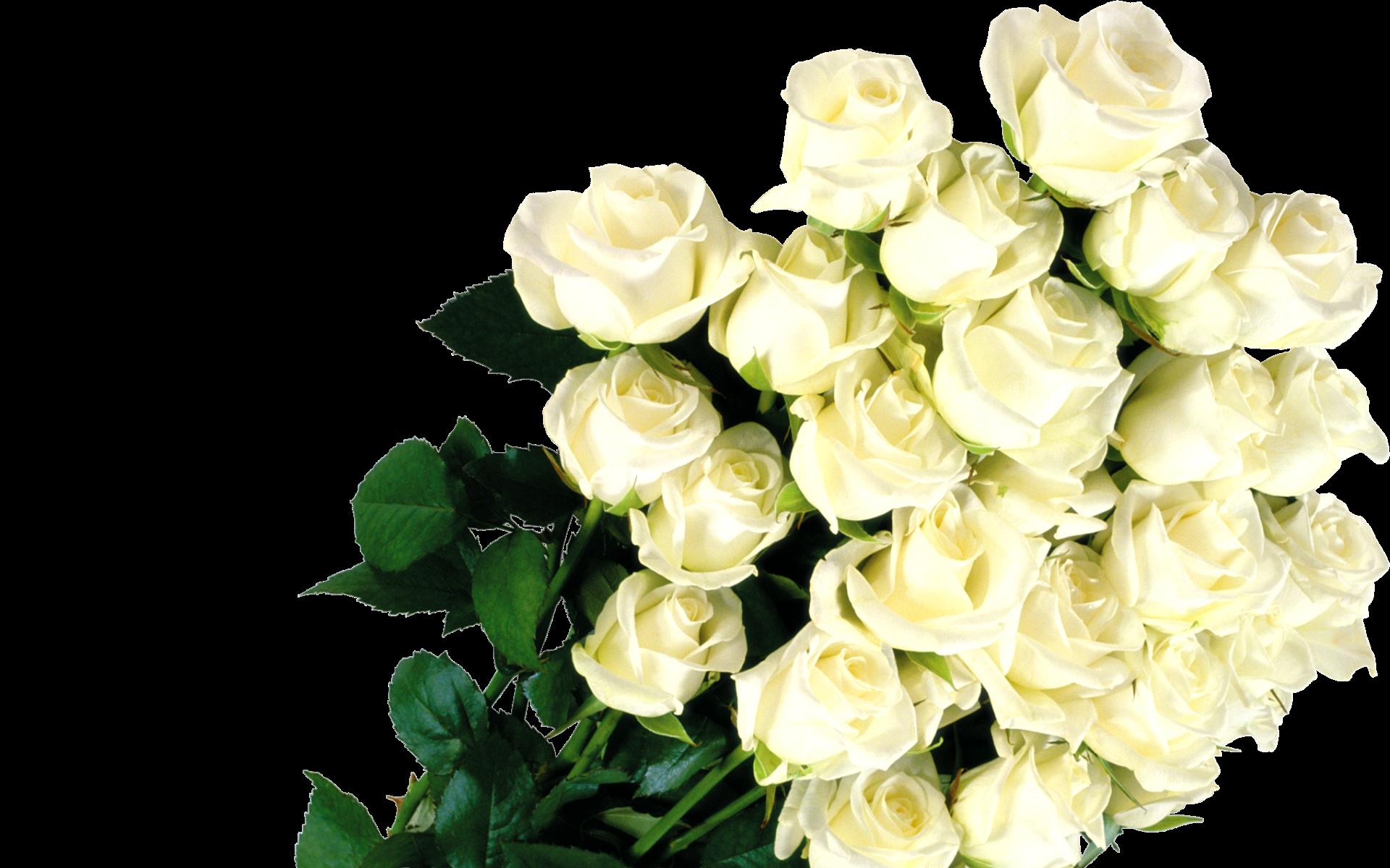 Картинки букеты цветов разные