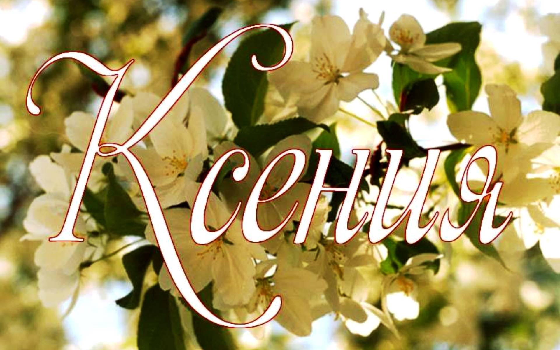 Поздравления для ксении с юбилеем