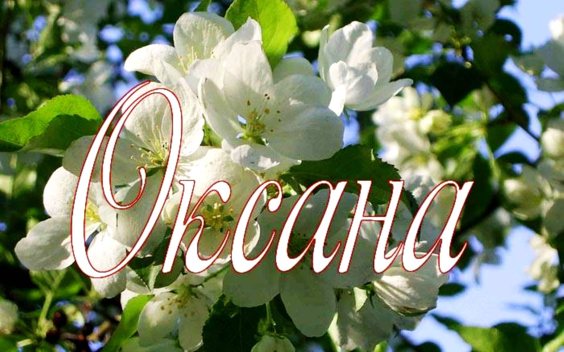 Имя означающее чудо или подарок
