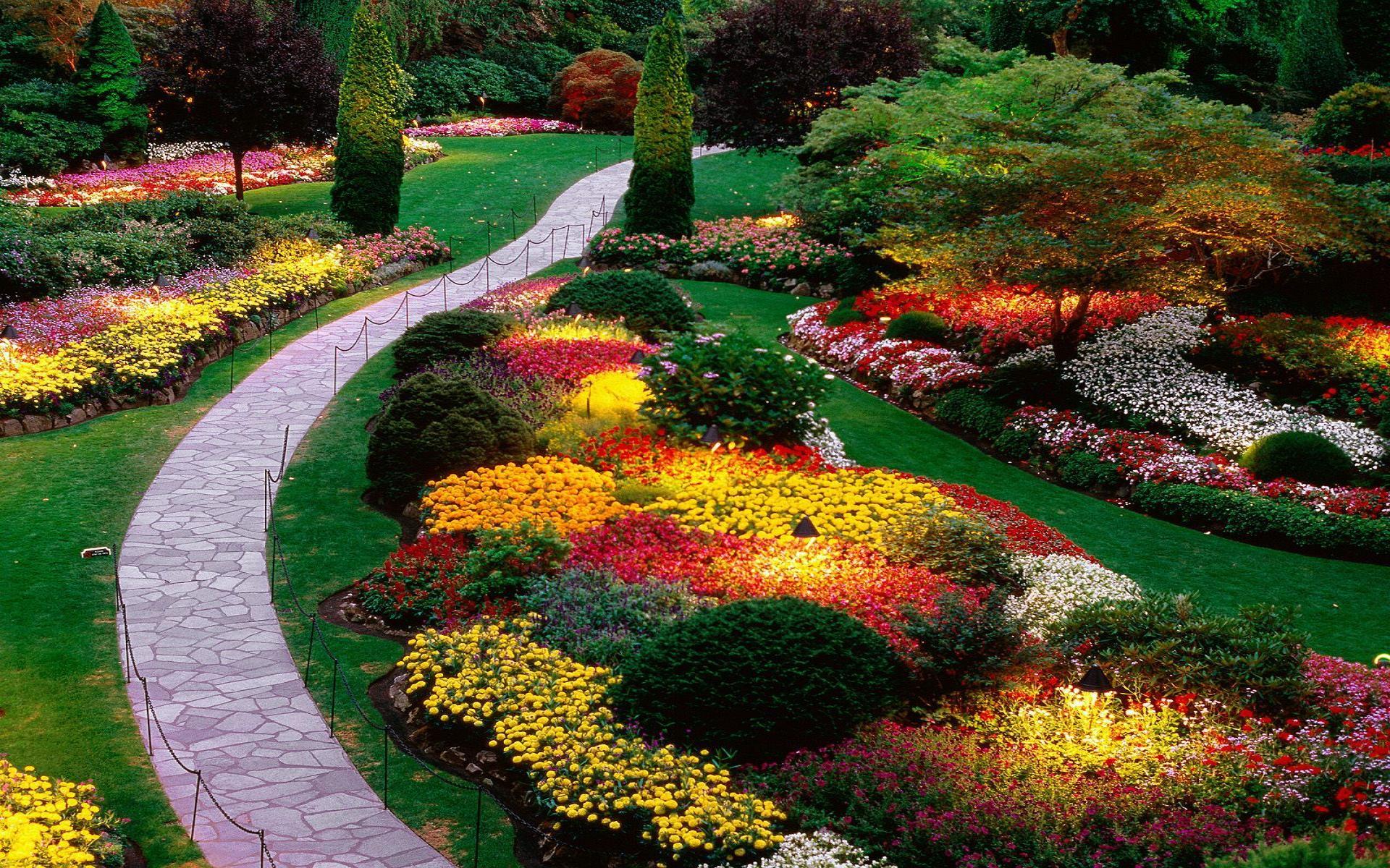 Парк цветов стихи