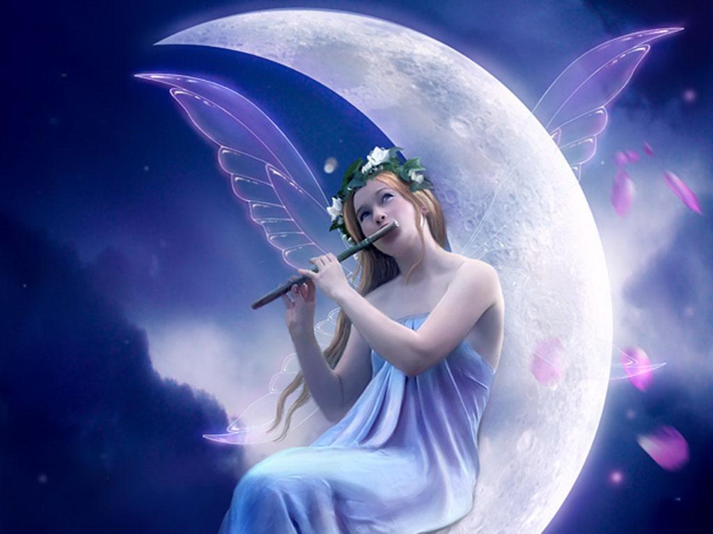 ночная фея картинки