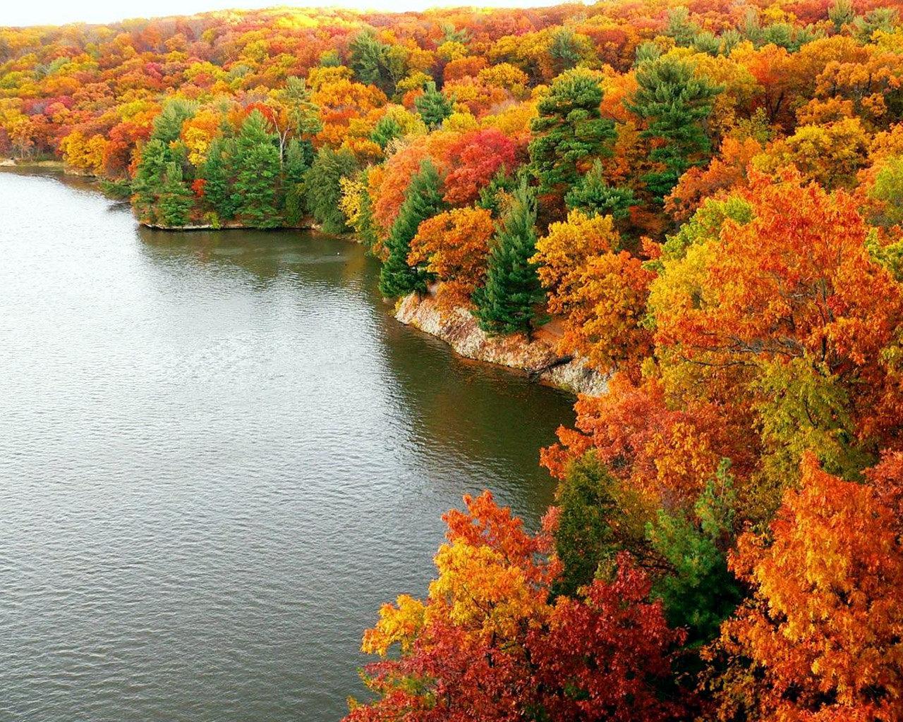 Осенняя картинка осень природа
