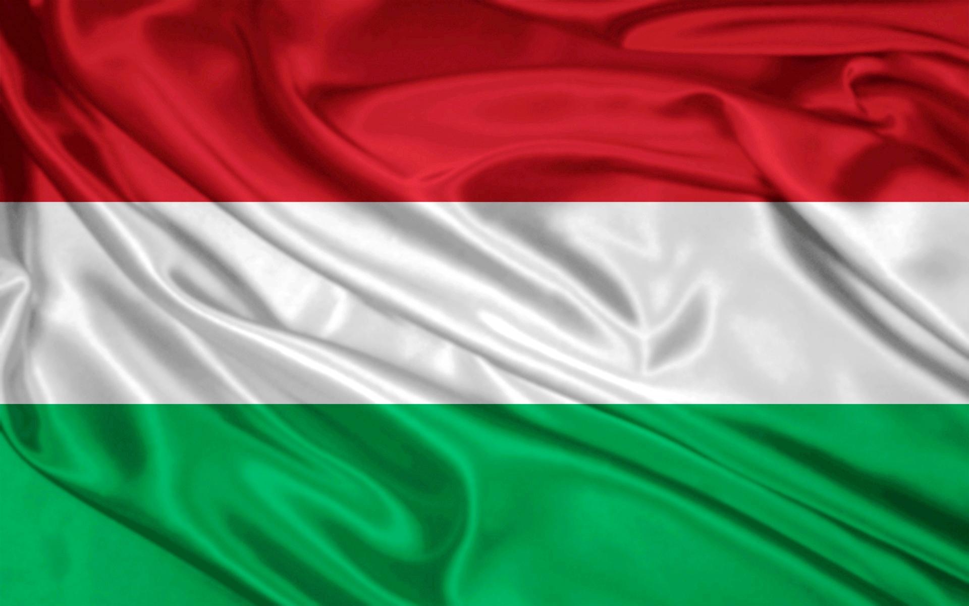 Зі школи на Закарпатті працівники СБУ зняли угорський герб та прапор