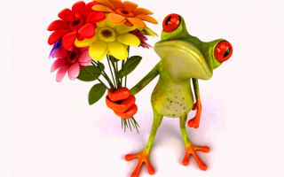 3D лягушка с букетом