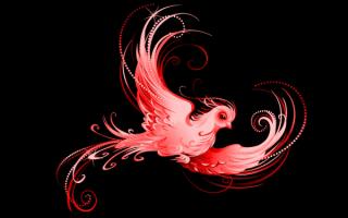 Жар-птица абстракция