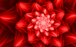 Красный цветок абстракция