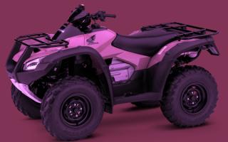 Квадроцикл Honda FourTrax Rincon ATV