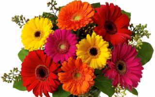 kartinki24_ru_bouguets_of_flowers_100.jpg