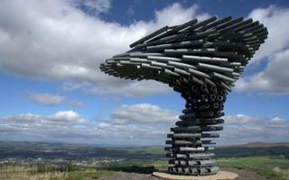 Поющее дерево в Пеннинских горах в северной Англии