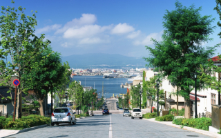 Дорога к японскому морю