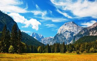 Поле лес горы небо