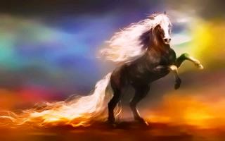 Фэнтези лошадь