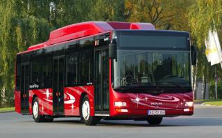 Bus Man Lion-s city / Автобус МАН Лион городской