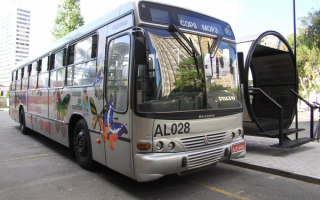 Bus Marcopolo / Автобус Маркополо