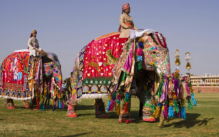 Парад слонов на фестивале в Джайпуре