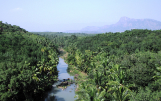 Природа Индии