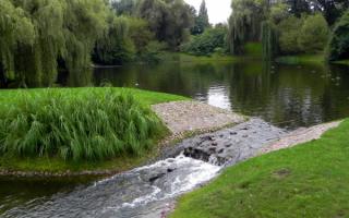В парке Варшавы