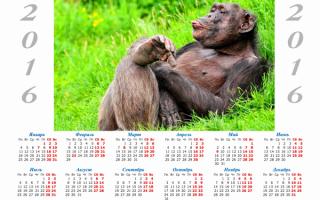 Календарь с символом 2016 года