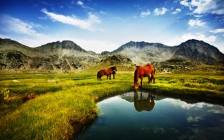 Национальный парк в Болгарии