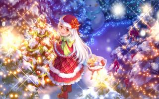 Новый год аниме