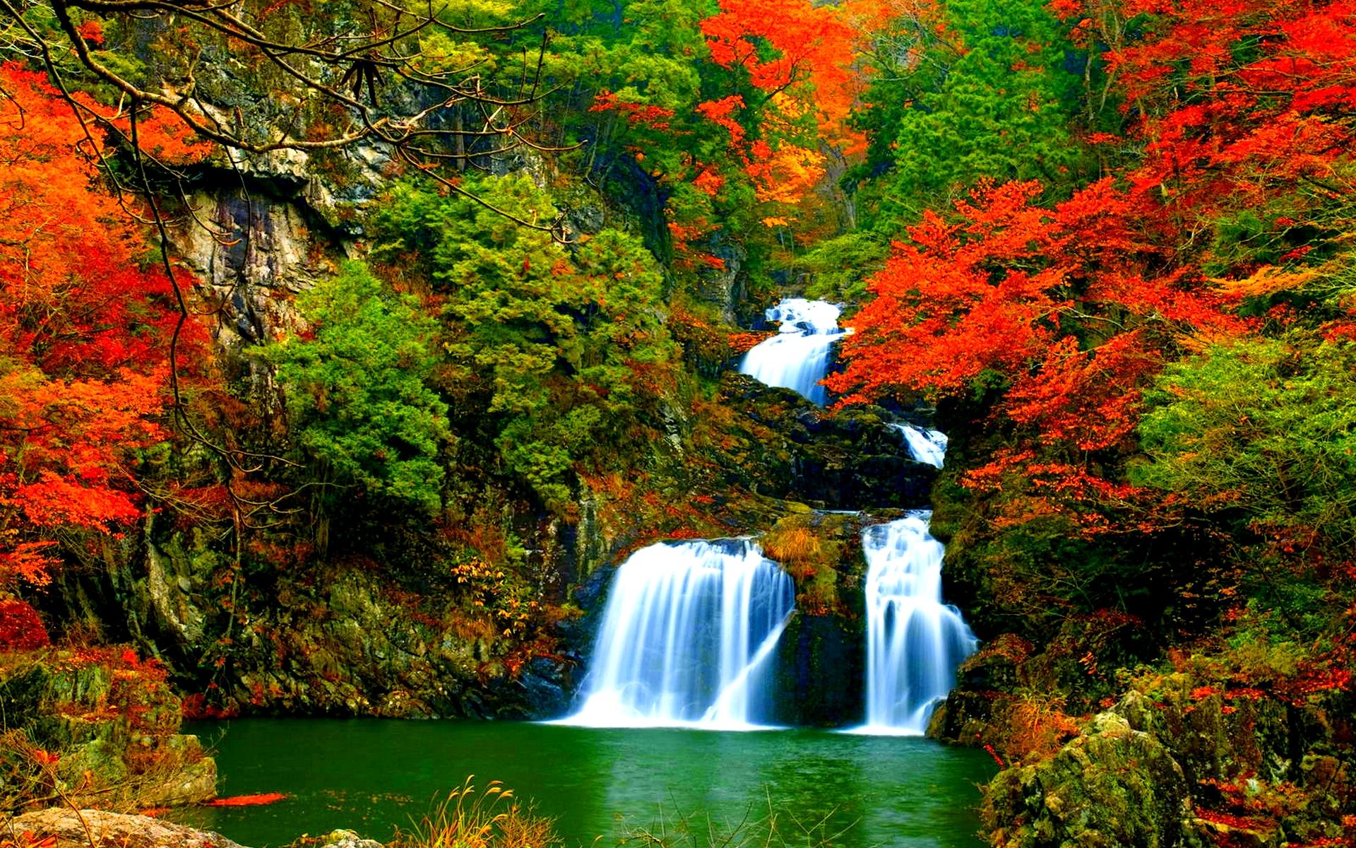 Картинка Водопад в осеннем лесу » Осень » Природа ...