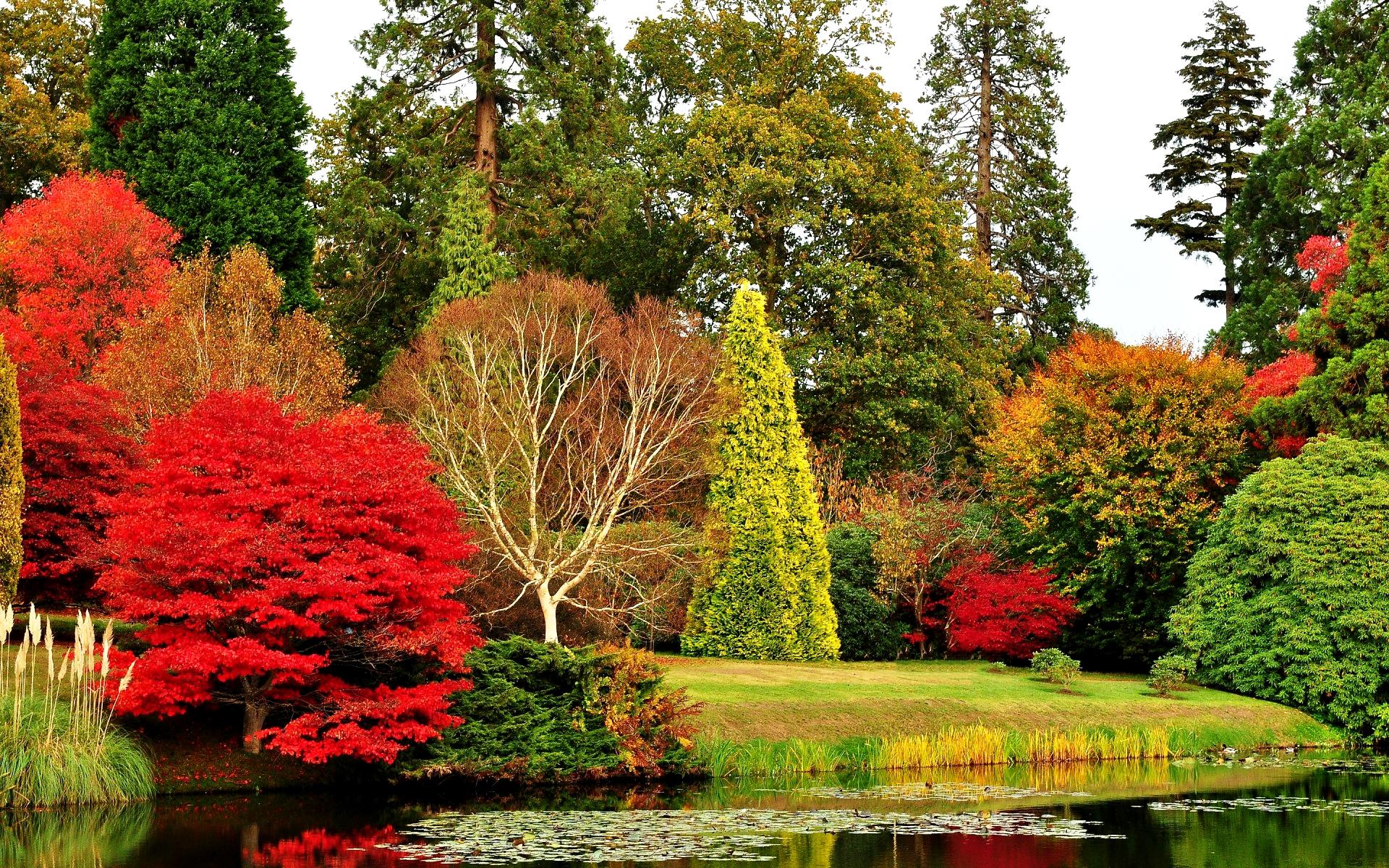 Картинка Осень в старом парке » Осень » Природа » Картинки ...